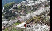 乡村旅游成农业供给侧改革新动能